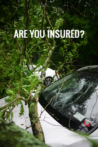 Question 2: Are You Insured?