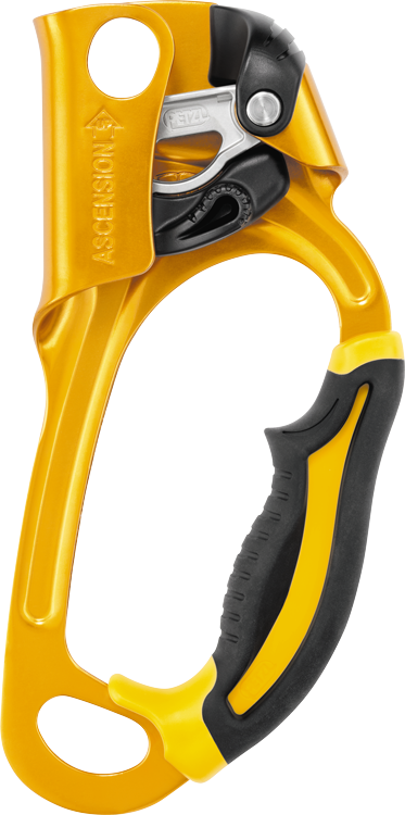 PETZL ASCENSION,Right hand