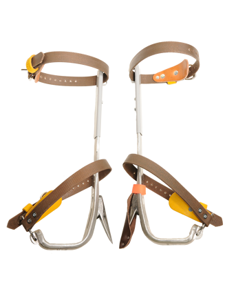 BASHLIN TREE CLIMBER SET