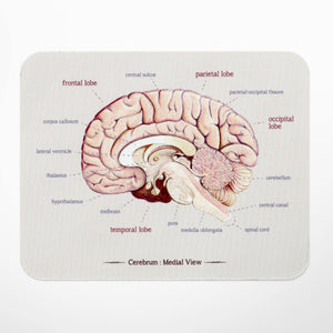 Brain Anatomy Mouse Mat