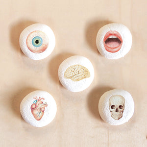 Body Parts Marshmallow