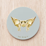 Sphenoid Bone Ceramic Coaster
