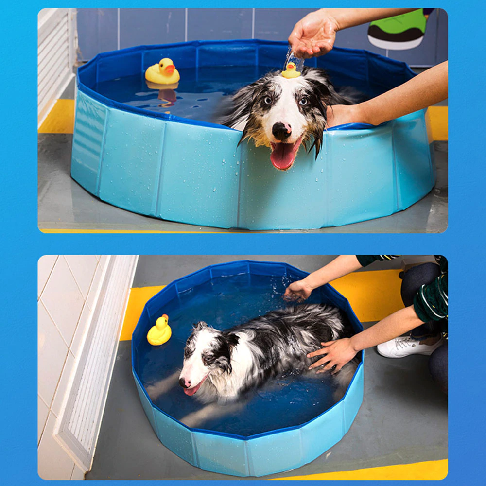 easy dog bath and pool