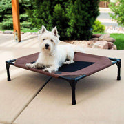 Raised Pet Bed