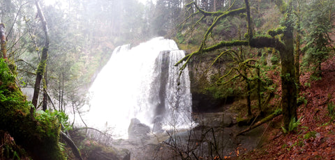 Middle Falls in January