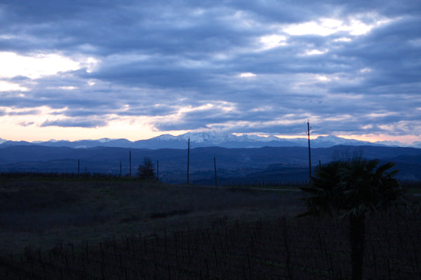 Rives Blanques in Limoux is near the Spanish border facing the Pyrenees mountains which borders France and Spain.