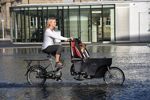 The Personal Cycle Stroller 2-in-1