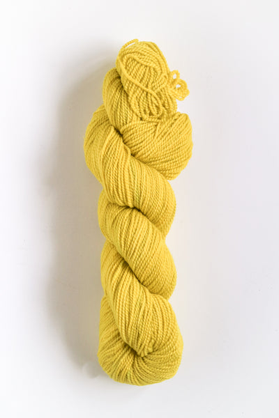 Koigu Hand Paint 4 Ply Spring Bright Yellow Mix