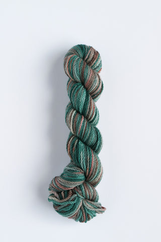 Koigu KERSTI Hand Paint DK Multi Browns with Teals