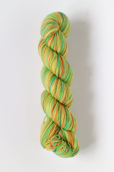 Koigu Hand Paint 4 Ply Crayons Orange Yellow Mint Mix