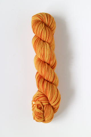 Koigu Hand Paint 4 Ply Crayons Orange Yellow Mix