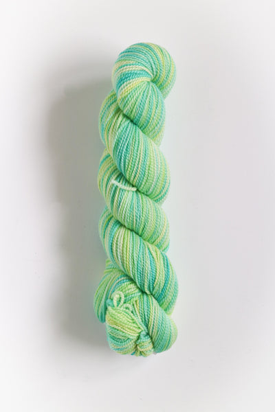 Koigu Hand Paint 4 Ply Crayons Spearmint Lemon Mix