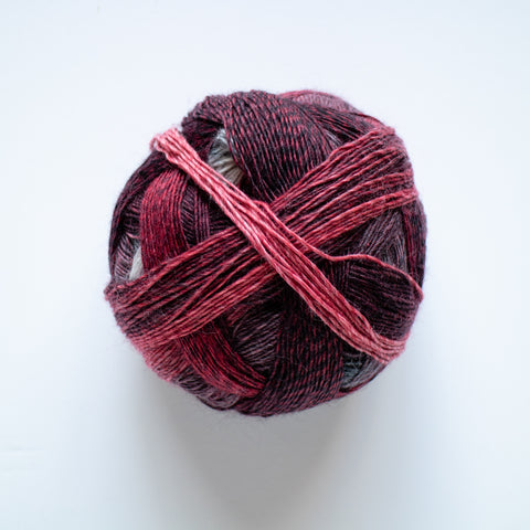 Sock Yarn  Zauberball 4 Ply Wool - The Follower