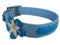 Blue_Flower_Dog_Collar_RLFG7GZ6ME0N.png