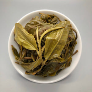"Baiying ""Benshan"" Varietal  Mixed Tree Sheng Pu'er"