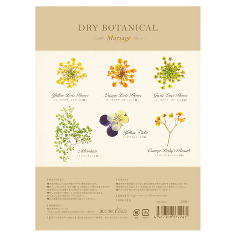 BLC FOR CORDE / DRY BOTANICAL / MARRIAGE flower nail art DIY