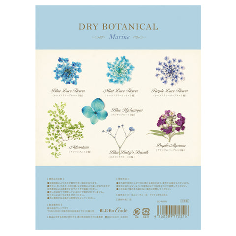 BLC FOR CORDE / DRY BOTANICAL / MARINE Blue Flower Nail