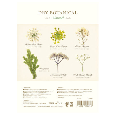 BLC FOR CORDE / DRY BOTANICAL / Natural Nail Art Flowers