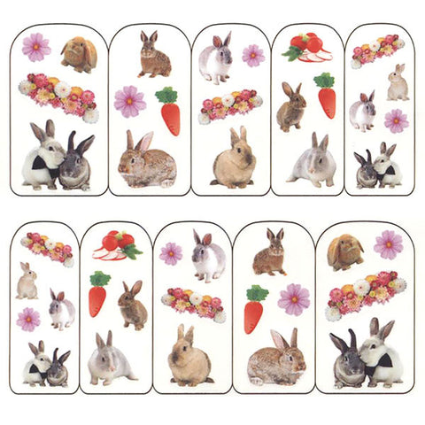 Nail Art Water Decals Sticker - Pop Decals - Carrot Bunnies