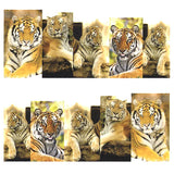 Nail Art Water Decals Sticker - Pop Decals - Bengal Tiger