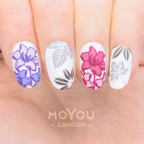 Daily Charme Moyou London Nail Art Stamping Plate Flower Power 18 Floral Prints