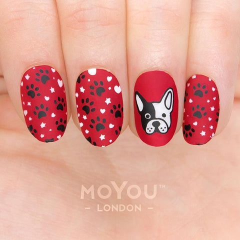 Daily Charme Nail Art Stamping Moyou London Animal 16