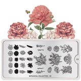 Moyou London Nail Art Stamping Botanical 03 - Delightful Succulent