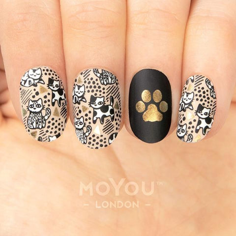 Daily Charme Nail Art Stamping Plate Moyou London Crazy Cat Lady 07 - Pawsitive Vibes