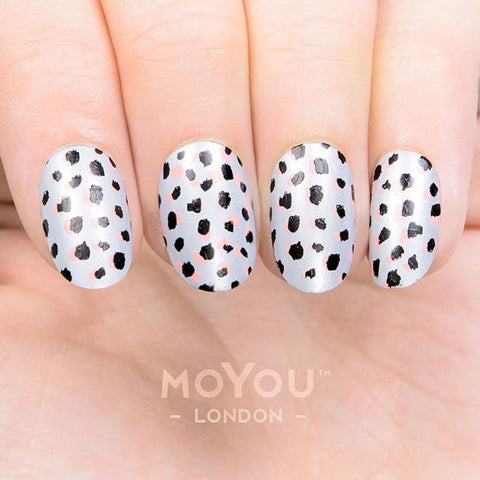 Daily Charme Moyou London Stamping Plate Trend Hunter 19