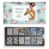 Tropical 20 - Feather Palettes Large MoYou Stamping Plate