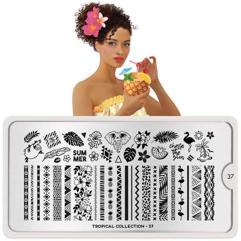 Daily Charme Nail Supply Nail Art Stamping Plate Tropical 37 - Visit the Tropics