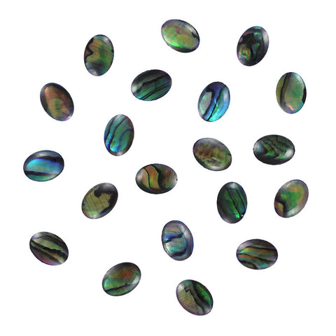 Oval Natural Seashell Gems / Teal