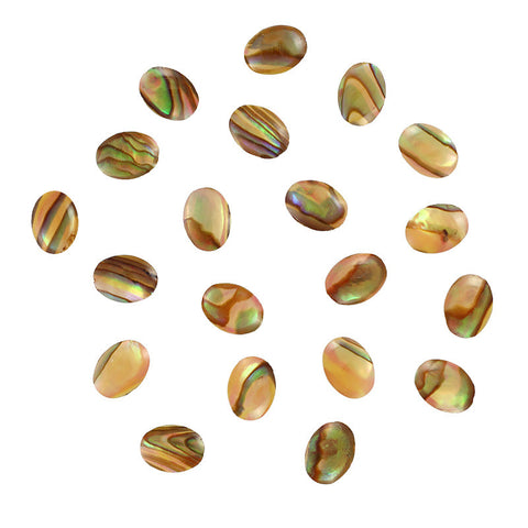 Oval Natural Seashell Gems / Cream