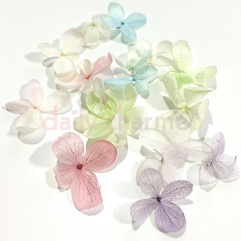 Nail Art Natural Hydrangea Flower Petals Set / 4 Colors