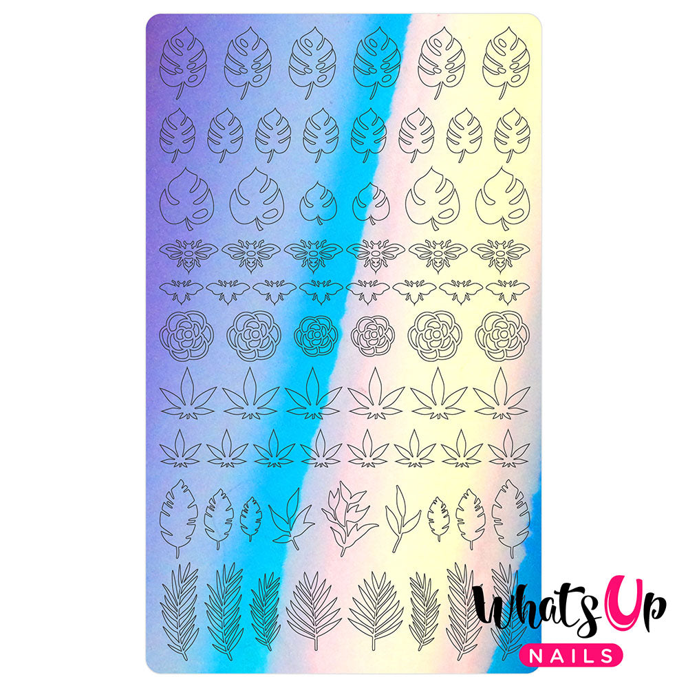 Vinyl Film Sticker / Botanical Garden Weed Leaf Monstera / Aurora Blue