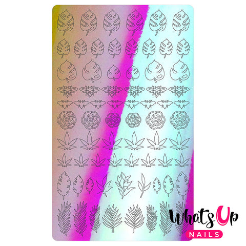 Vinyl Film Sticker / Botanical Garden Weed Leaf Monstera / Aurora Pink