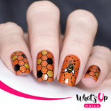 Whats Up Nails / Picnic in the Park Nail Stamping Plate