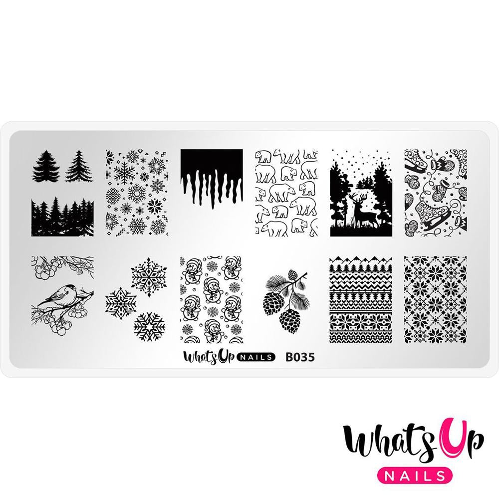 Daily Charme Nail Supply Stamping Plates Whats Up Nails / Icy Wonderland