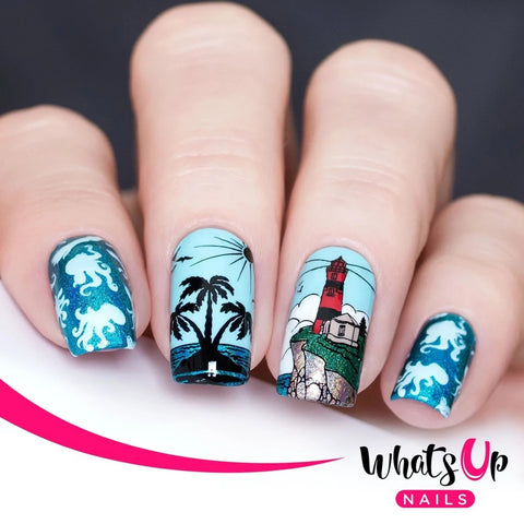 Daily Charme Whats Up Nails Stamping Plate / Coasting to the Sea