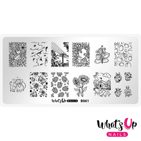 Daily Charme Whats Up Nails Stamping Plate / Summer in the Countryside