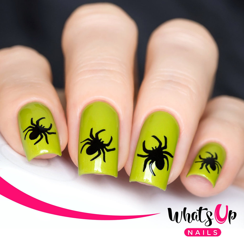 Daily Charme Nail Art Supply Nail Vinyls Sticker Stencil Whats Up Nails / Spider Stickers & Stencils