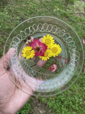 Yellow Daisy Rolling Plate