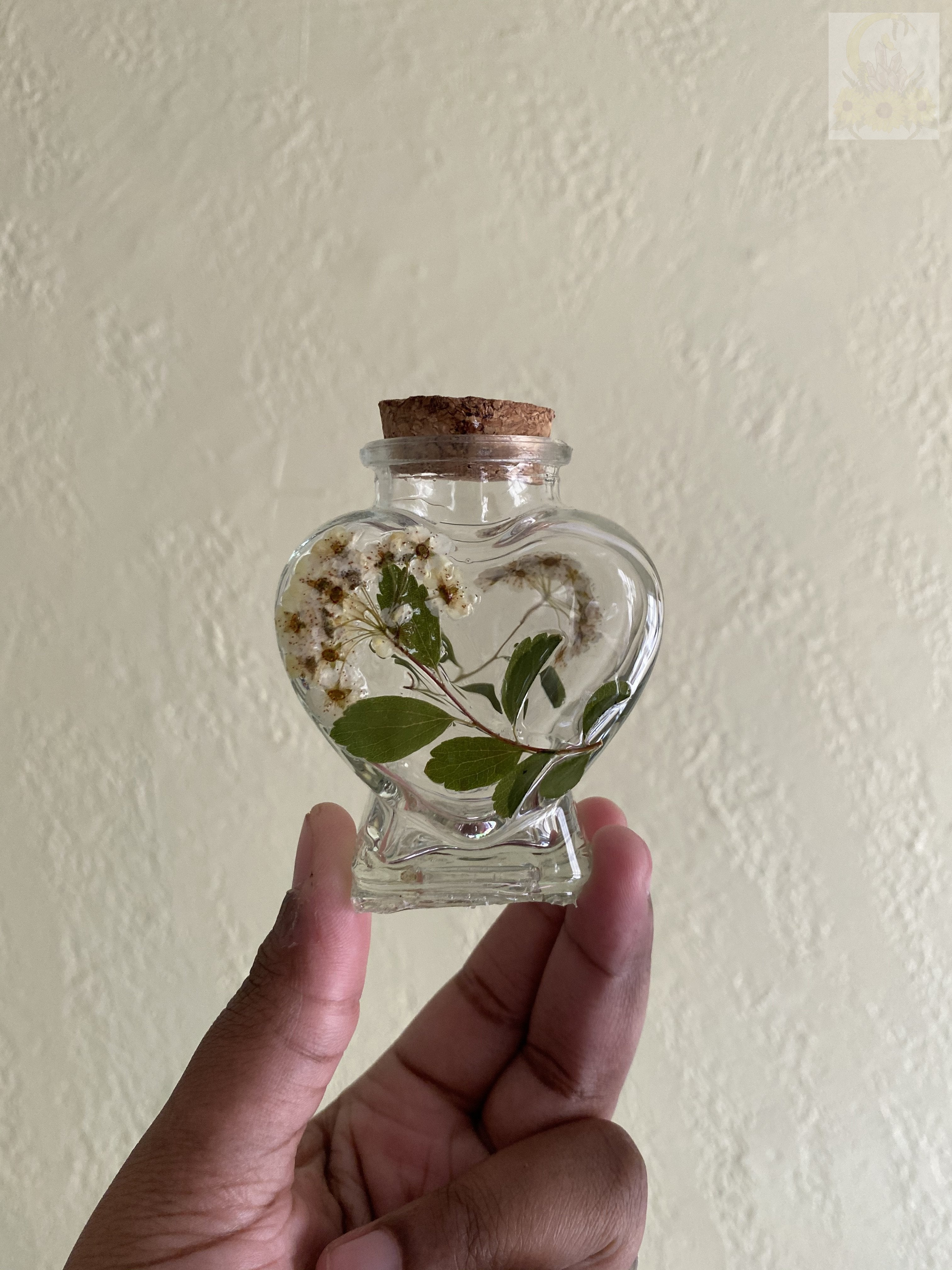 White Bridal Wreath Mini Stash Jar