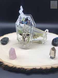 Crystal Clear Moth Coffin Box
