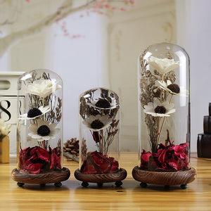 Crystal Seal Vase Dried Flowers Terrarium