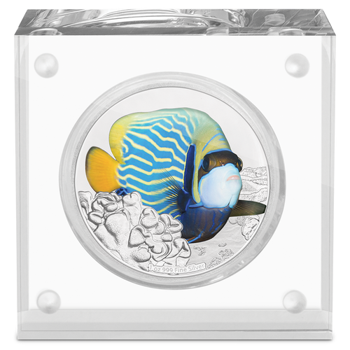 Reef Fish - Angelfish 1oz Silver Coin