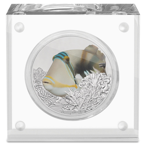 Reef Fish - Triggerfish 1oz Silver Coin Display