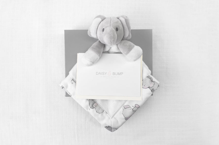 Elephant Voucher Gift Box for Newborn Baby