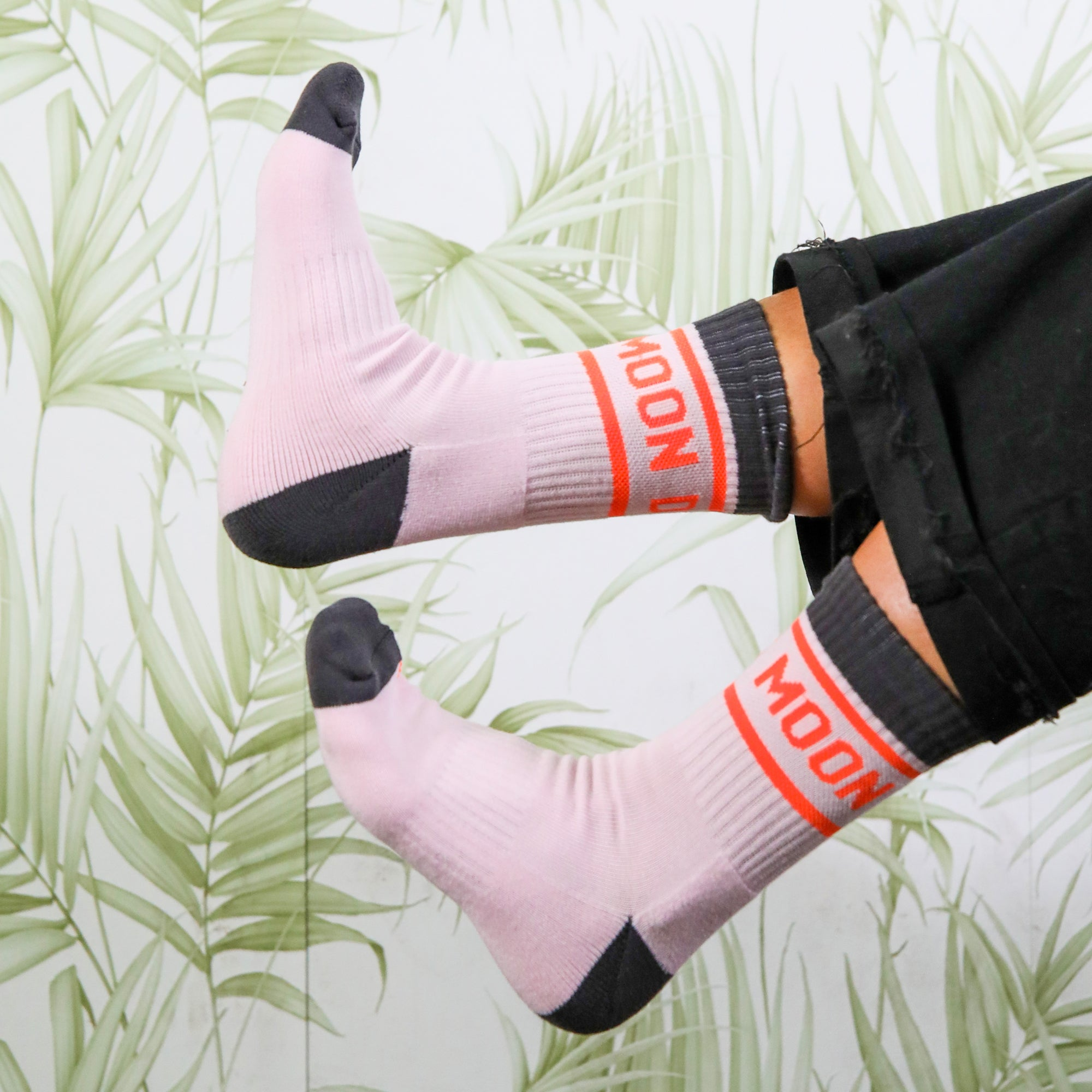 Moon Dog Socks (pink)
