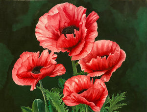 """Four Poppies"" Watercolor Florals"